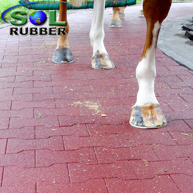 Horse Floor Dog Bong Rubber Paver