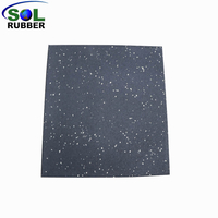 Fitness Rubber Flooring Gym Mat